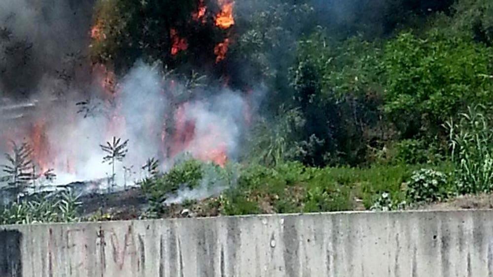 Incendi boschivi, riunione in Prefettura per coordinare attività di prevenzione
