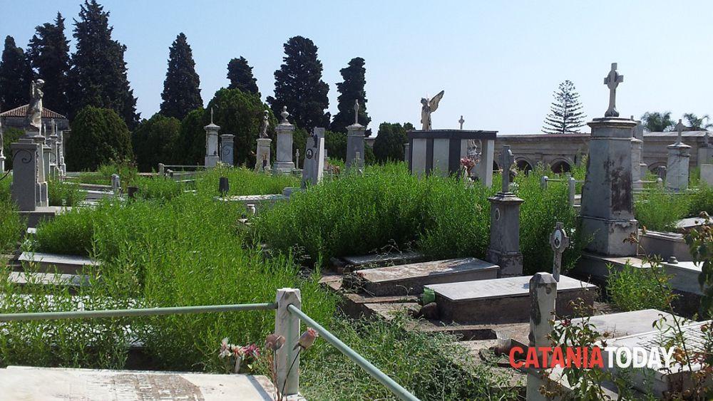 Giarre cimitero in cattive condizioni tombe tra topi e for Motta arredi ragalna